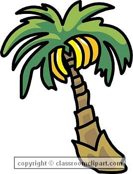Banana palm clipart.