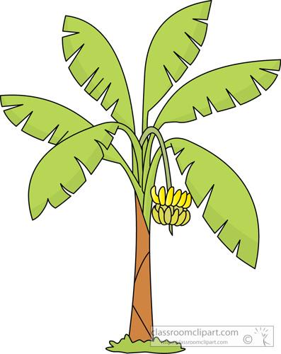Banana plant clipart.