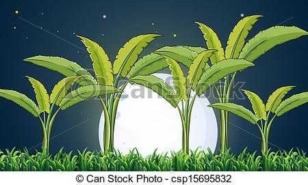 Vectors of A banana plantation under the white fullmoon.