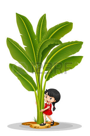 730,837 Tree Stock Vector Illustration And Royalty Free Tree Clipart.