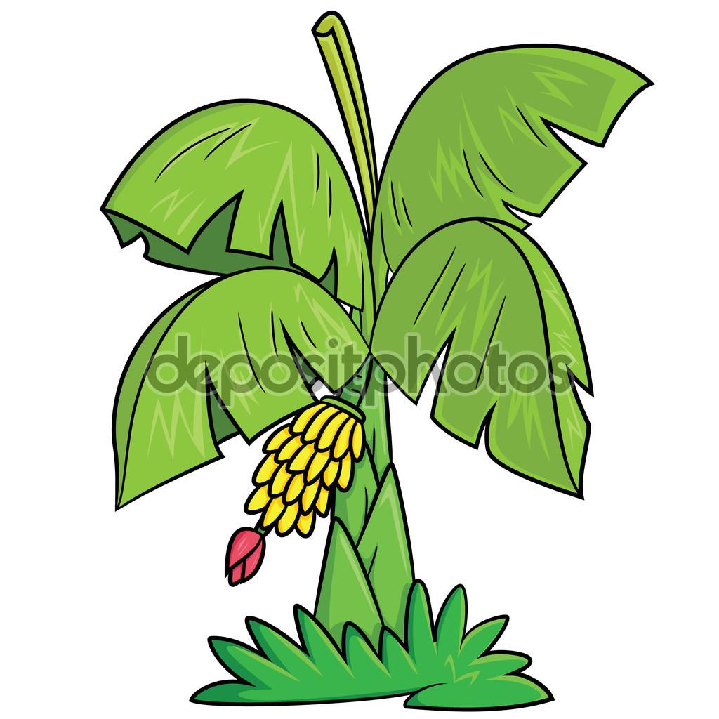 Banana Tree Cartoon — Stock Vector © rubynurbaidi #87915220.