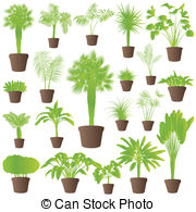 Banana shrub Vector Clip Art Illustrations. 17 Banana shrub.