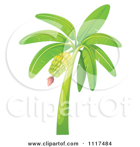 Cartoon of a Green Shrub.