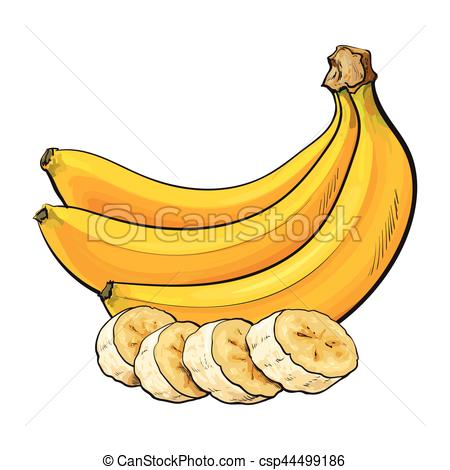 Ripe banana bunch and slices, sketch vector illustration.