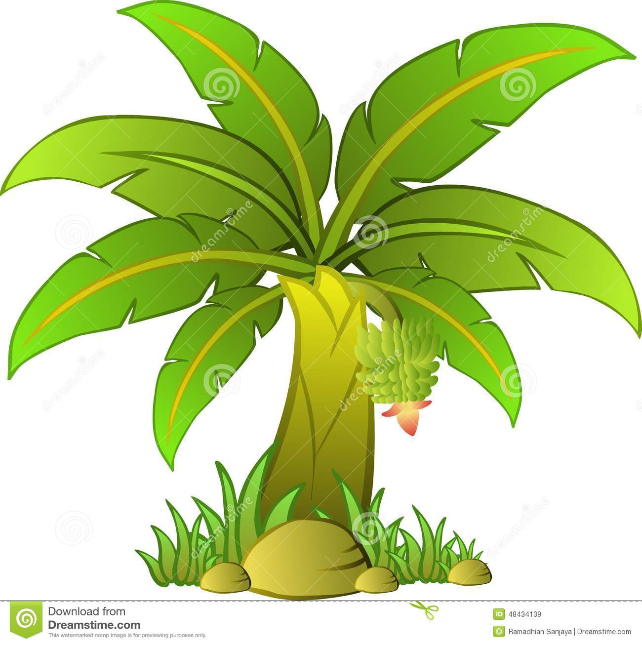 Banana Tree Stock Illustration.