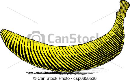 Vector of Woodcut banana.