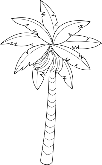 Banana tree clip art black and white.