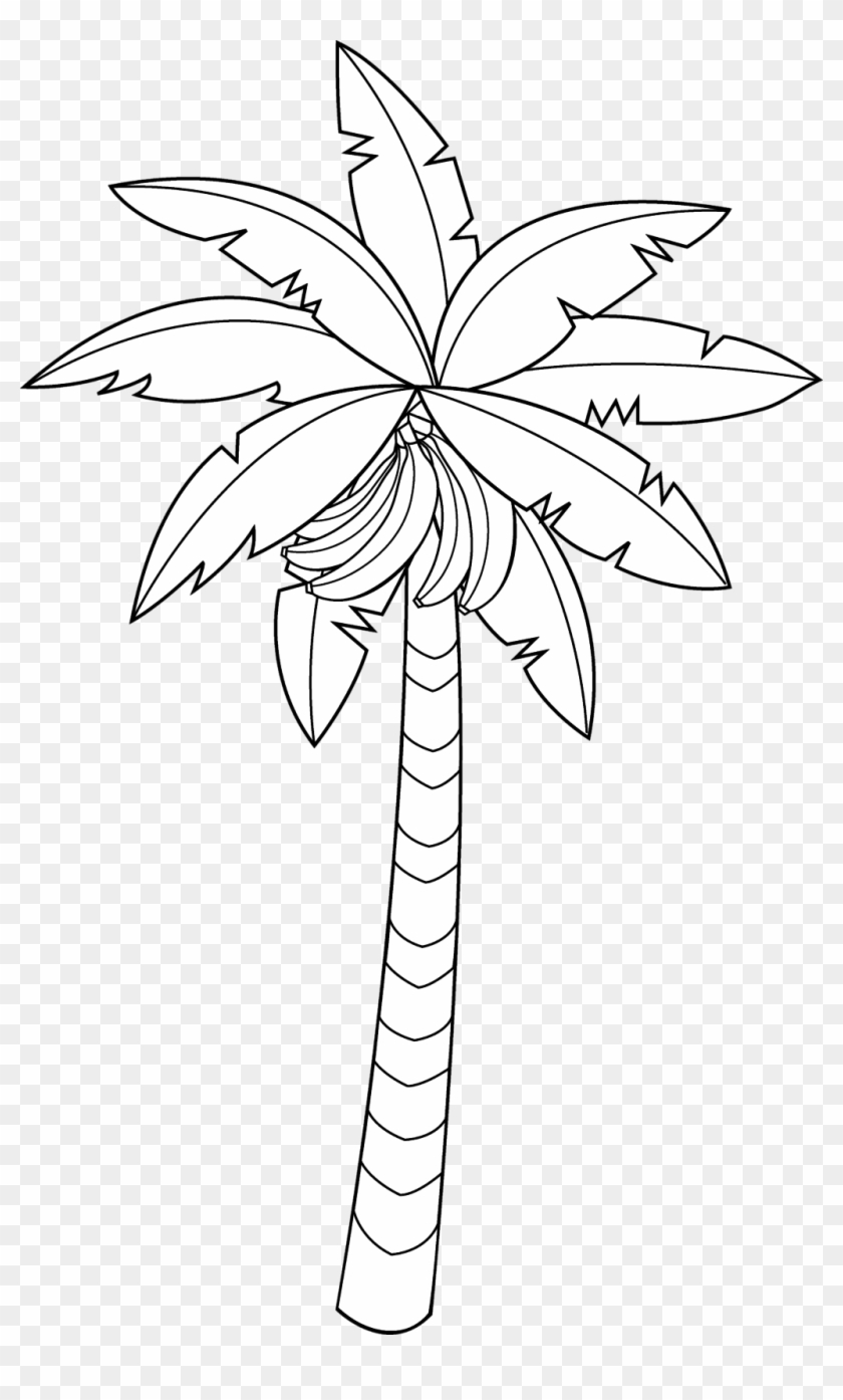 28 Collection Of Banana Tree Clipart Black And White.