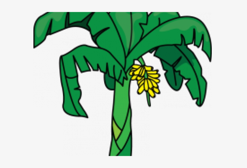 Banana Tree Clipart.