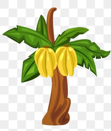 Banana Tree PNG Images.