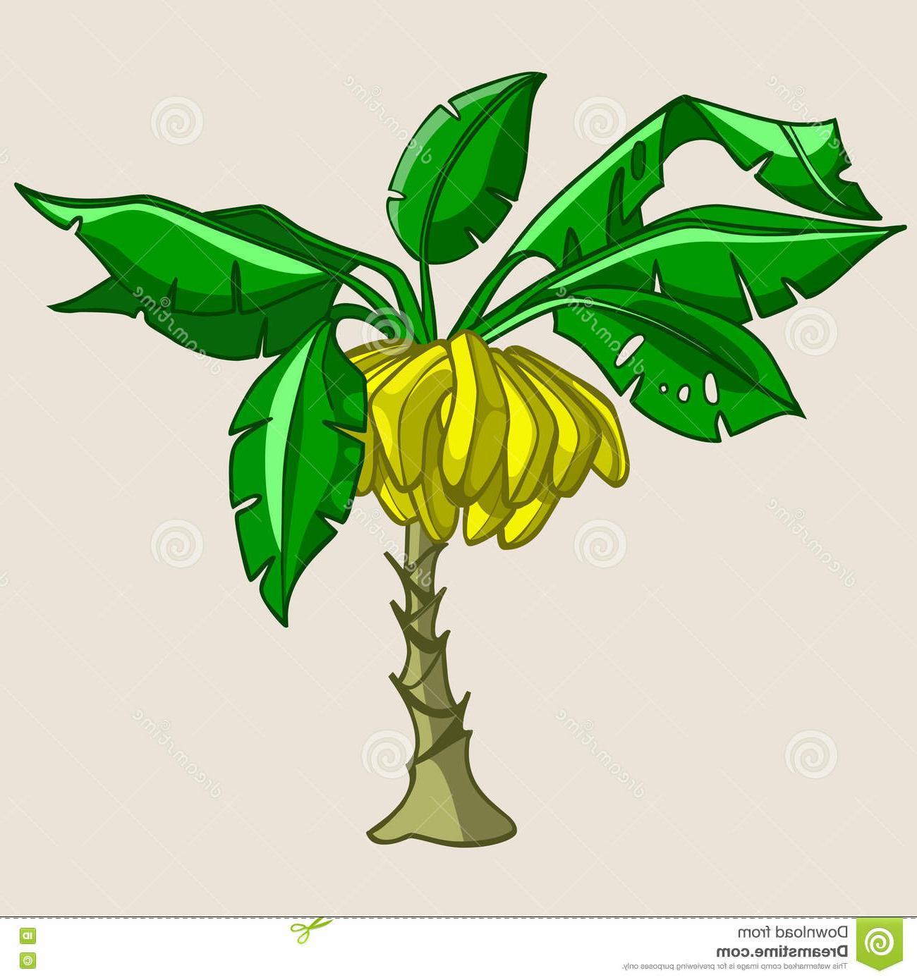 Top Banana Tree Clip Art Cdr » Free Vector Art, Images, Graphics.