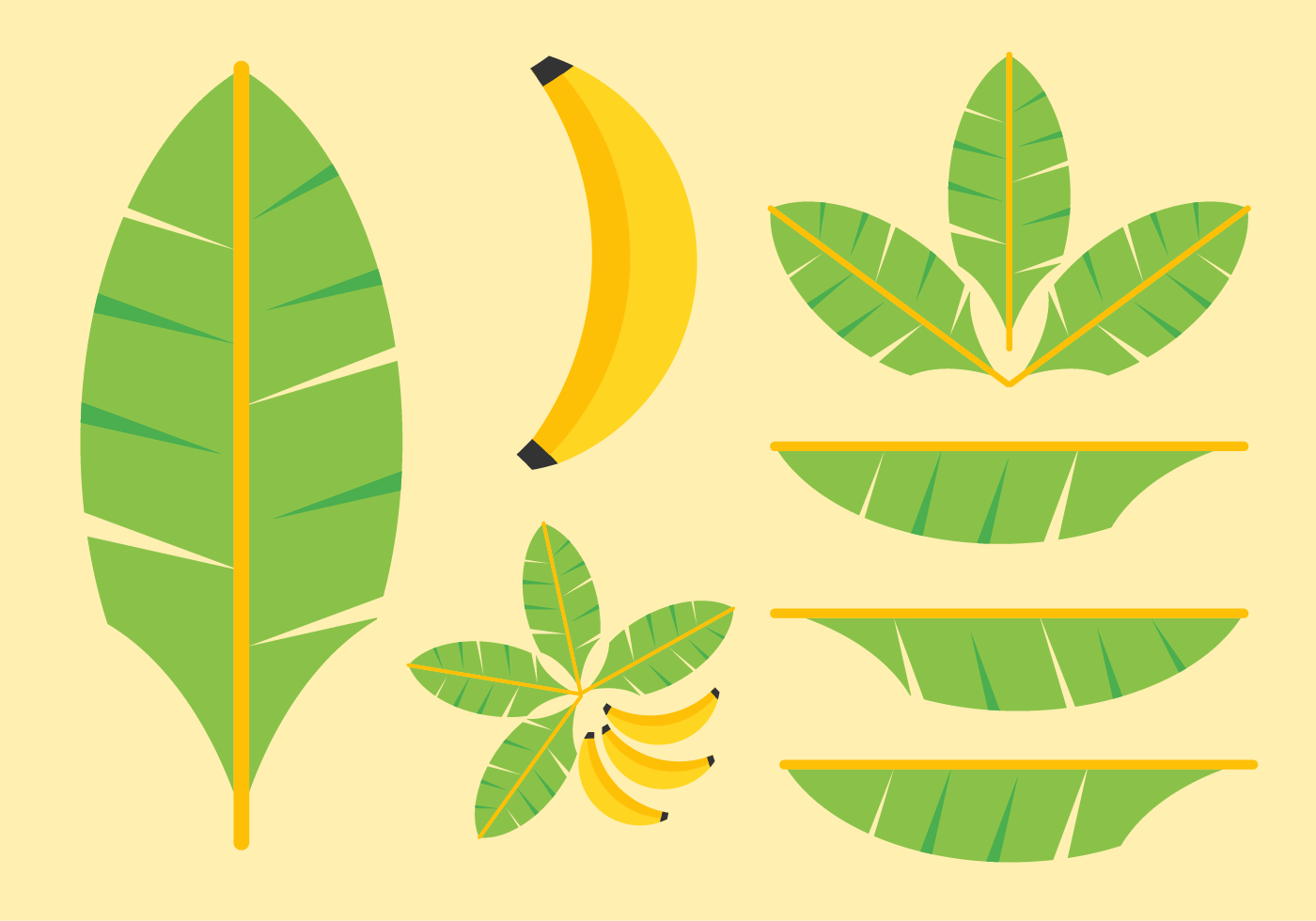 Banana Leaves Vectors.
