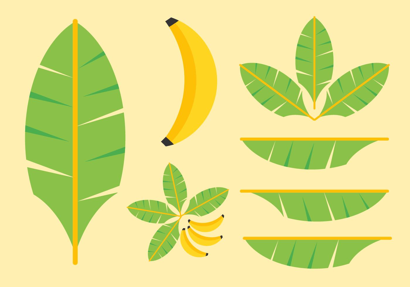 Banana Leaves Vectors.