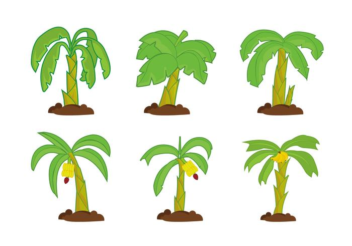 Banana tree vector pack.
