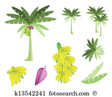 Banana tree Clip Art Vector Graphics. 1,372 banana tree EPS.