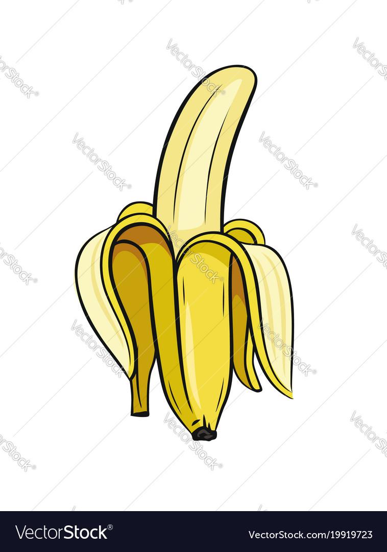 Sketch of half peeled banana.