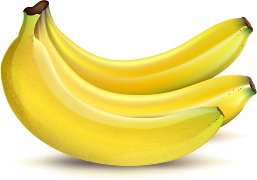 Banana free vector download (245 Free vector) for commercial use.