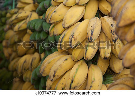 Picture of Saba Banana.