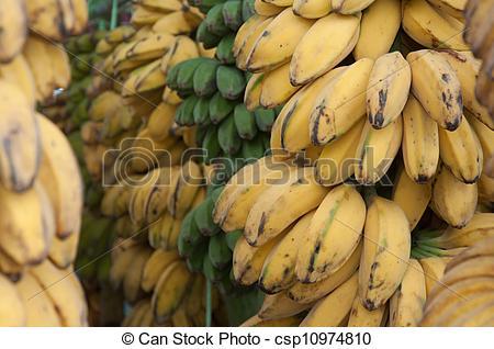 Stock Photography of Saba Banana.