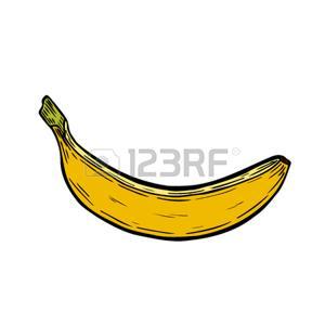 Casco Di Banane Vettoriali, Illustrazioni E Clipart.