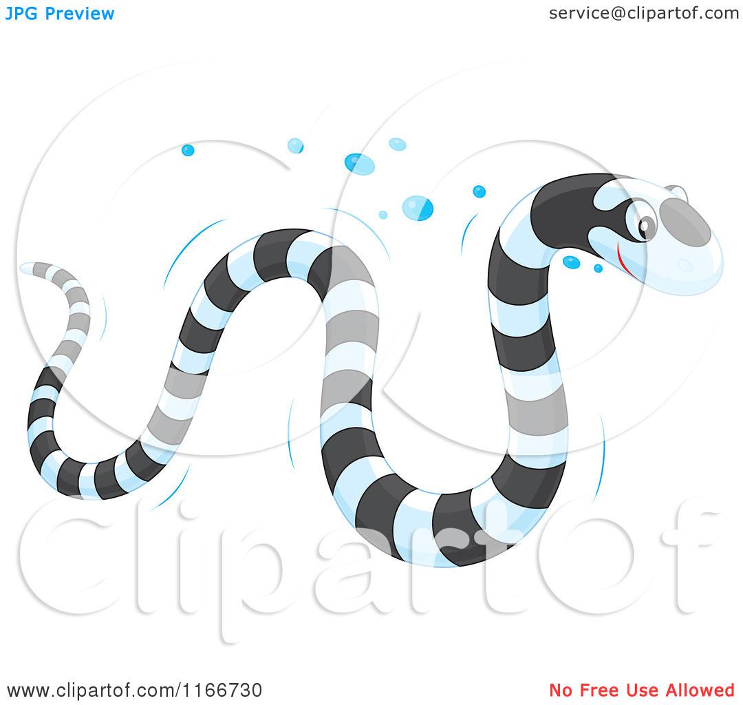 Cartoon of a Banded Sea Kraits Snake.