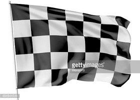 Bandeira Quadriculada Em Mastro imagens vetoriais.