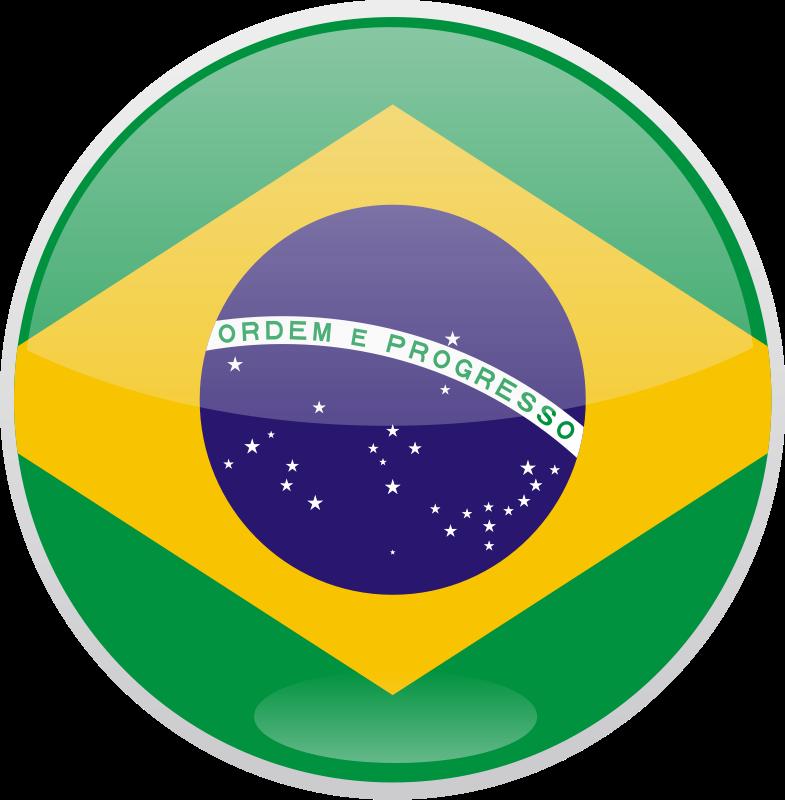 Flag of Brazil Free Vector.