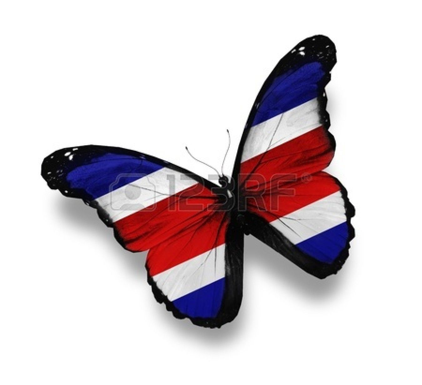 Bandera De Costa Rica en forma de mariposa.