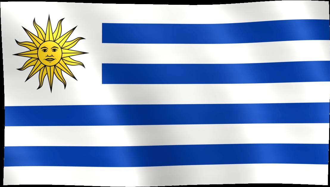 HD Bandera De Uruguay.