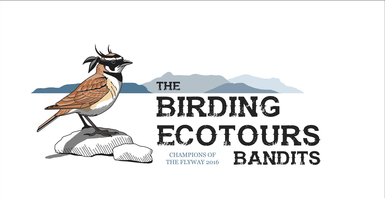 The Birding Ecotours Bandits.