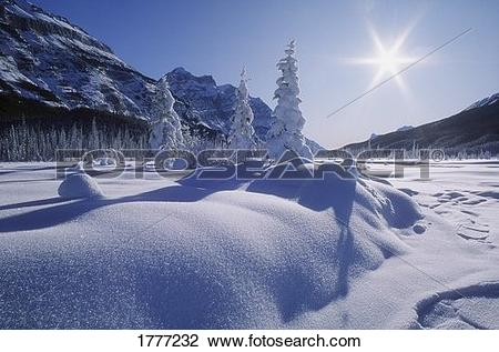 Stock Photo of Snow covered landscape, Banff National Park.