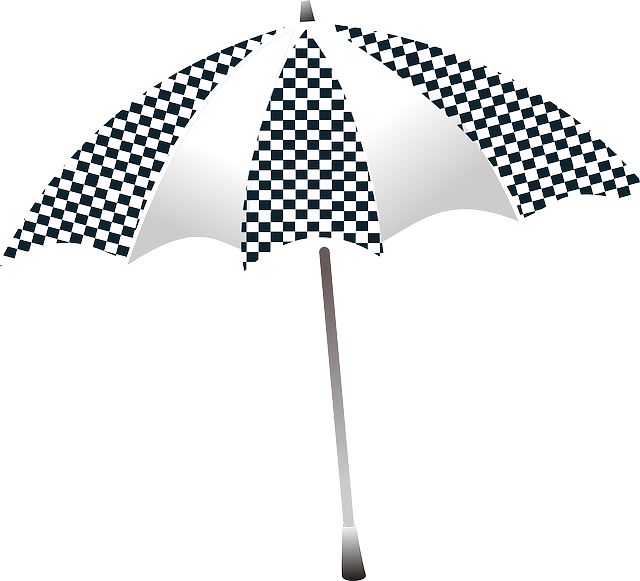 Free vector graphic: Umbrella, Checkered, Shelter.