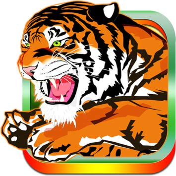 Amazon.com: Cricket Bangladesh: Appstore for Android.