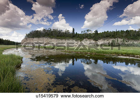 Stock Photograph of The Salt River, Salt River Day Use Area in.