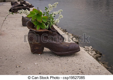 Pictures of White Flowers in shoe.