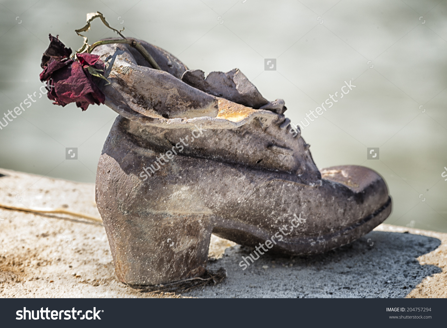Dry Rose On Bronze Shoes On Stock Photo 204757294.
