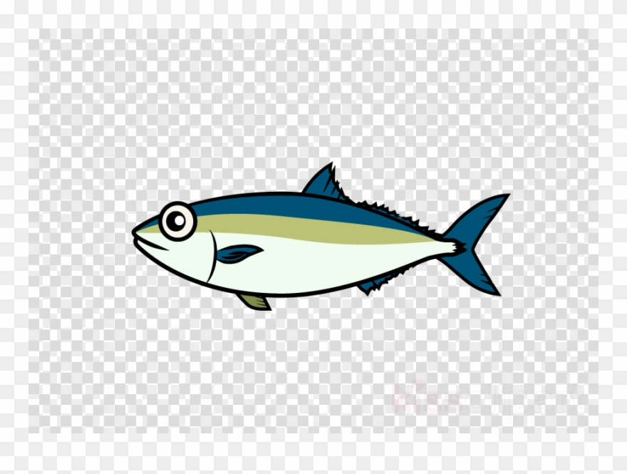 Download Japanese Amberjack Clipart Bony Fishes Japanese.
