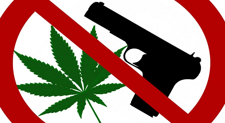 If You Use Marijuana Are You Banned From Buying Guns?.