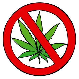 Salem City Council might ban marijuana sales.