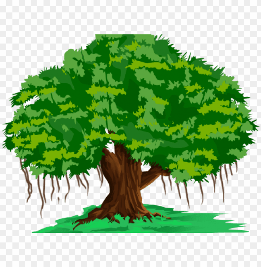 banyan tree clipart hindi.