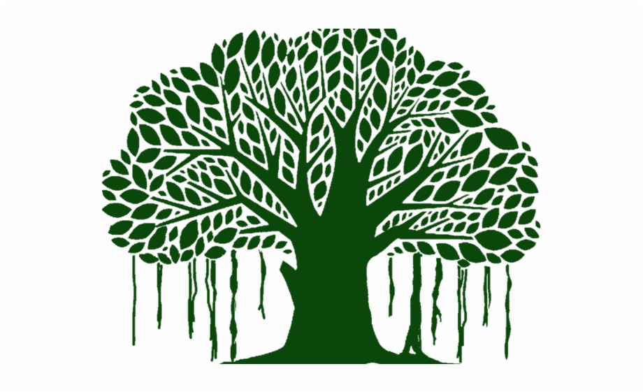 Banyan Tree Clipart White Background.