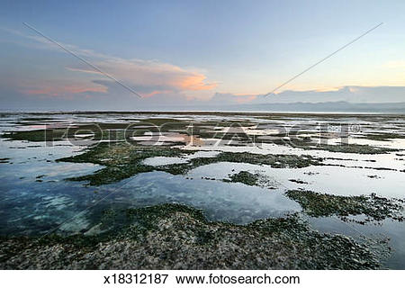 Picture of Gland Plengkung Beach Banyuwangi East Java. x18312187.