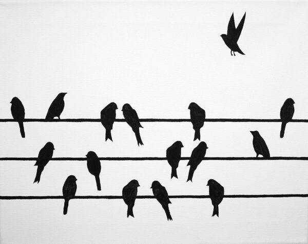 Pin by Marilyn Banz on Birds on a wire.