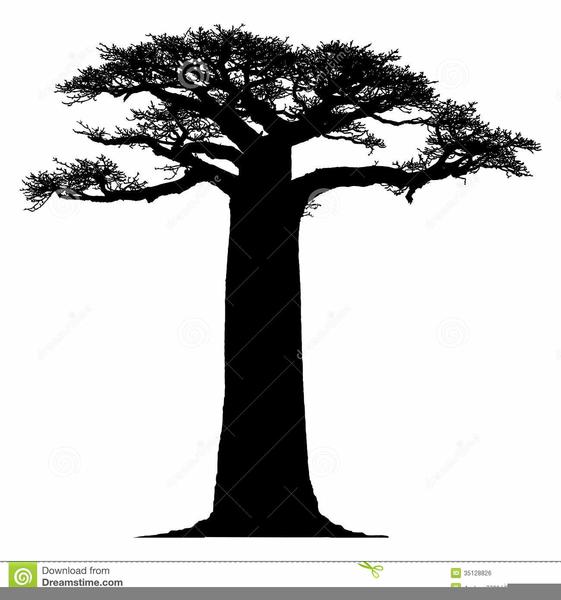 Free Clipart Baobab Tree.