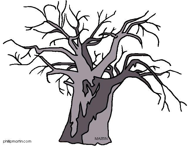 baobab trees.
