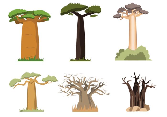 Free Baobab Vector.