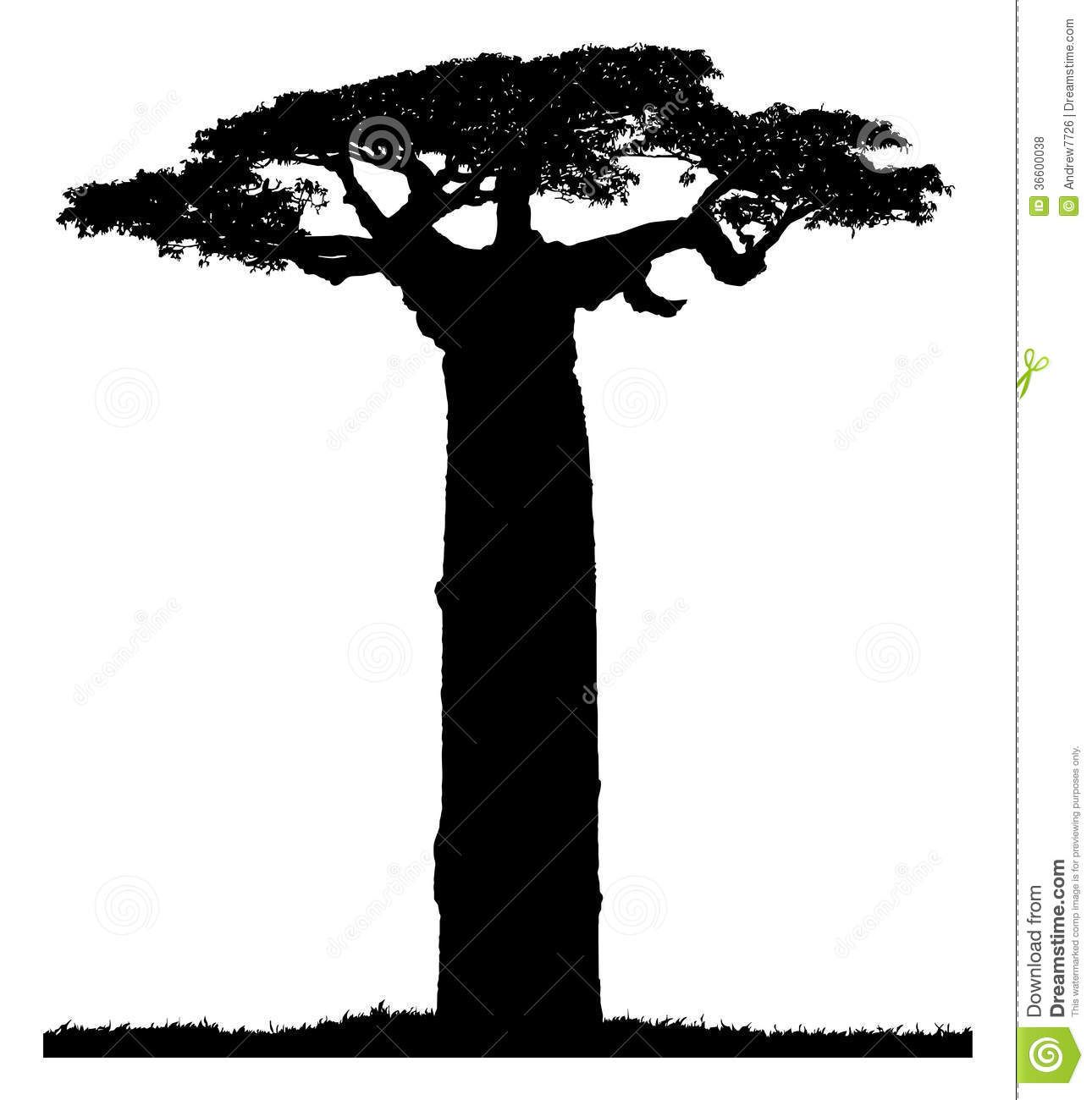 56 Awesome baobab tree clipart.