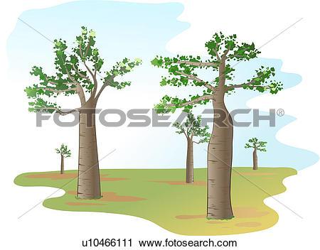 Clipart of tree, tree, trees, plants, baobab, icon, plant.