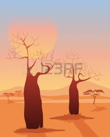 667 Baobab Tree Cliparts, Stock Vector And Royalty Free Baobab.