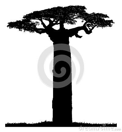 Baobab Cartoon Tree Stock Vector.